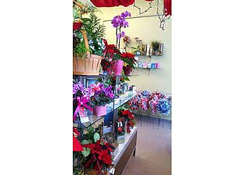James White & Sons Flowers & Gifts Scarborough , ON, M1K4G7 FTD